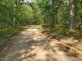 Beaver Trail - Photo 2