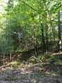 120 Acres North Star Trail - Photo 12