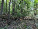 120 Acres North Star Trail - Photo 18