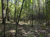 120 Acres North Star Trail - Photo 4