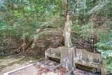 6715 Indian Pipe Circle - Photo 16