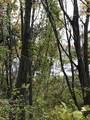 00 Bear Lake Road - Photo 3