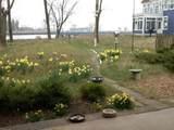 20056 North Shore Drive - Photo 3