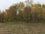 Manning Lake Road - Photo 3