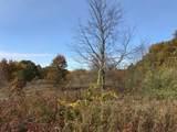 Manning Lake Road - Photo 9