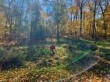 0 VL Lakewood Trail - Photo 13