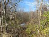 Marquette Woods Road - Photo 1