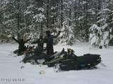 6002 Osprey - Photo 11