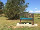Misty Pines Lots 30 & 31 - Photo 3