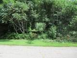 Tract 3 Deep Woods Drive - Photo 1