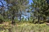 7017 3 Mile Road - Photo 31