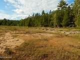 214 Acres Juniper Trail - Photo 41