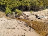 214 Acres Juniper Trail - Photo 65