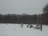 Vacant Land 5 Acres Pine Creek Road - Photo 11