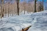 Arcadia Ridge Drive - Photo 15