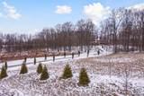 4975 Ridge Creek Lane - Photo 4