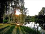 18580 Grass Lake Road - Photo 10