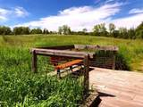 18580 Grass Lake Road - Photo 7