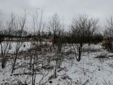 V/L Tasker Road - Photo 10
