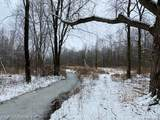 40 acres Summers Road - Photo 6