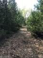 00 Pine Knob Road - Photo 4