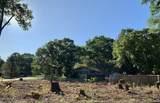 14438 Pinewood Drive - Photo 1