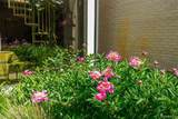 5755 Bloomfield Glens - Photo 64