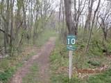 6314 Sweet Clover Hills Dr - Photo 6