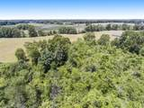 13225 Riethmiller Road - Photo 86