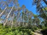 8186 Ne Bo Shone Road - Photo 30