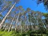 8186 Ne Bo Shone Road - Photo 43