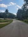 13020 Spruce Ridge Road - Photo 3
