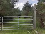 3405 Frenchline Road - Photo 2