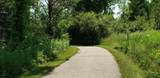 11567 Norfolk Drive - Photo 33