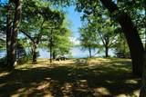 194 Emerson Lake Drive - Photo 10