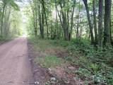 Vl Blanchard Road - Photo 2