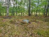 00 Beaver Trail - Photo 1