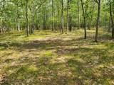 00 Beaver Trail - Photo 2