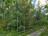 50140 Nine Mile Rd Road - Photo 11