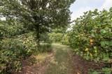 2408 Antietam Drive - Photo 50