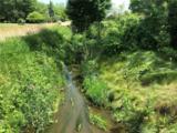 48819 Martz Road - Photo 3