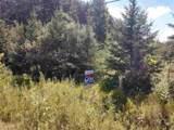 Mt Morris Road - Photo 1