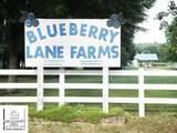 13240 Blueberry Lane - Photo 20