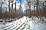 Lots 2&4 Deadwood Lane - Photo 1