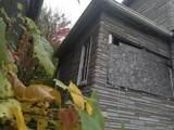 6777 Scotten Street - Photo 4