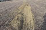 1 Oelke Road - Photo 5