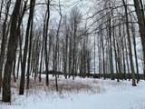 75 Acres State Road - Photo 16