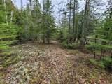 214 Acres Juniper Trail - Photo 53
