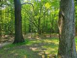 6779 Woods Trail - Photo 11