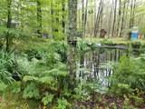 7676 Holton Duck Lake Road - Photo 43